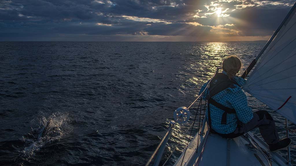 Wild West Sailing | Dolphin Watching at Dusk